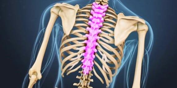 spine-cancer-thoracic-region.jpeg