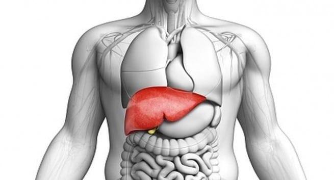 liver-health-655x353.jpg