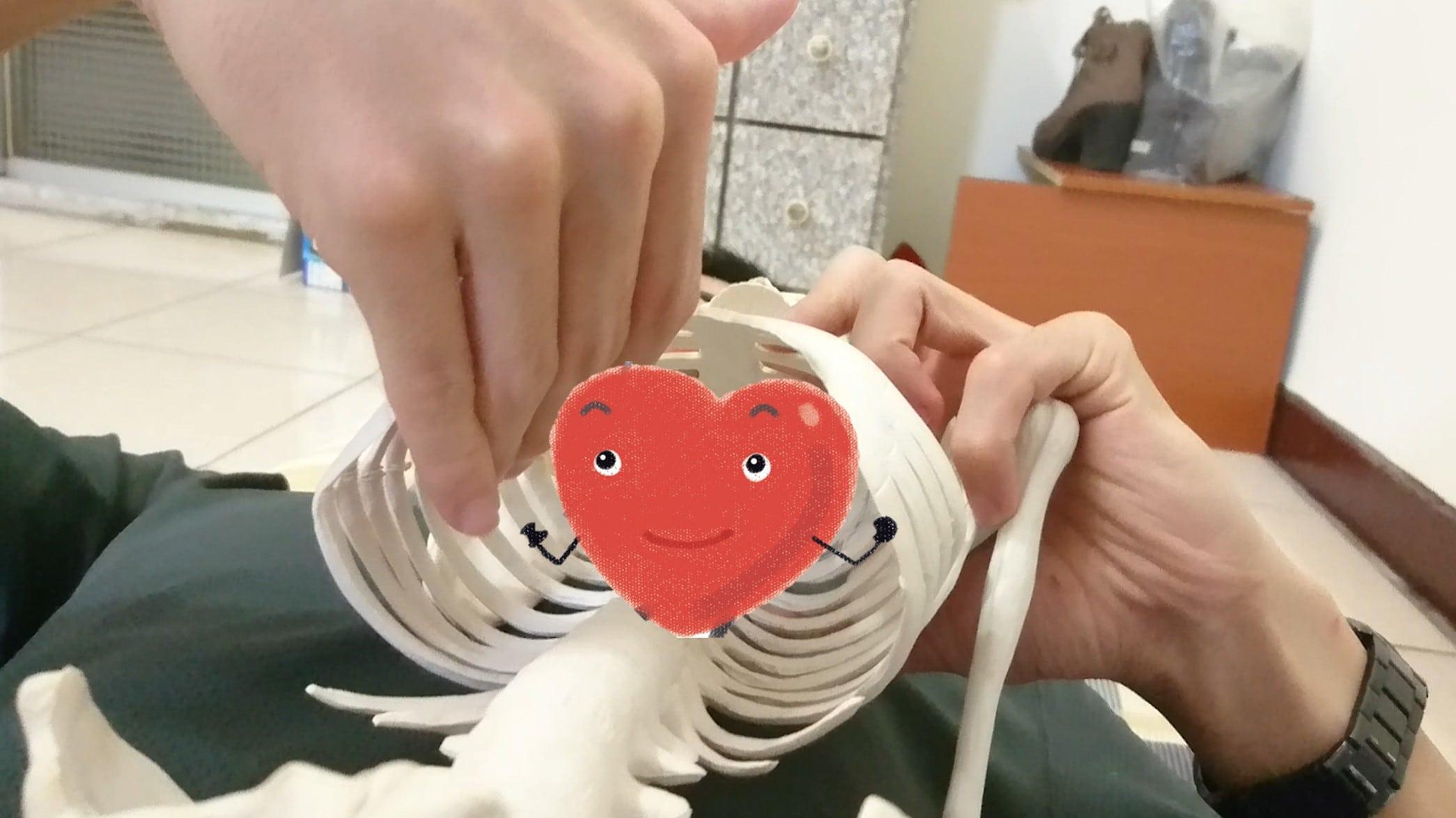 心臟.jpg
