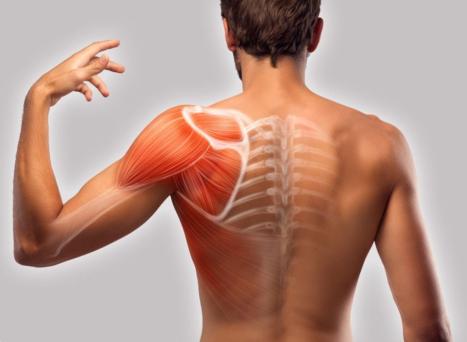 shoulder-blade-muscle-pain-hand-muscle-pain.jpg